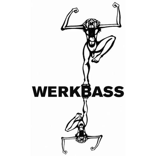 Werkbass's avatar