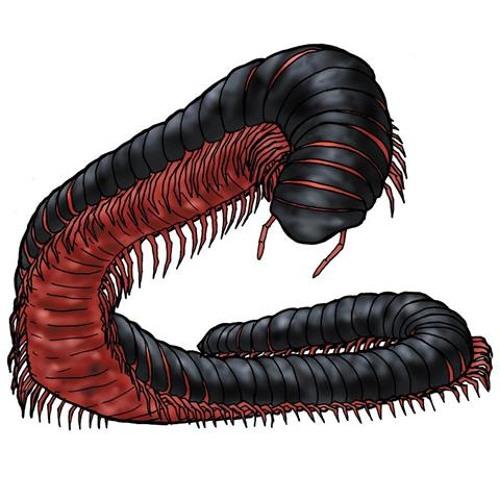 LymonAdd's avatar