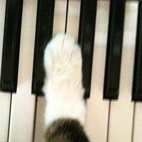 seaofcat's avatar