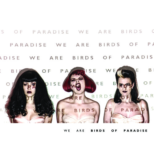 We Are Birds Of Paradise's avatar