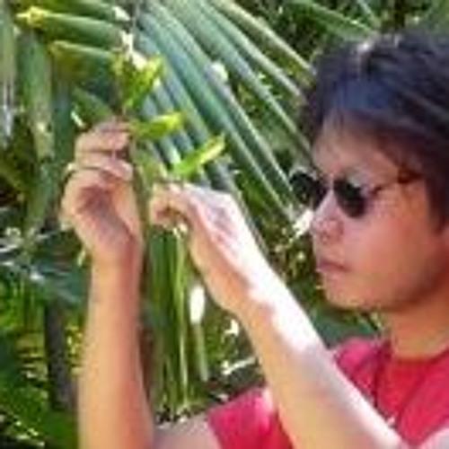 Kyoichiro Kawamoto's avatar