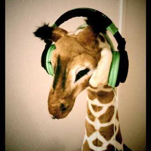 zimt13's avatar