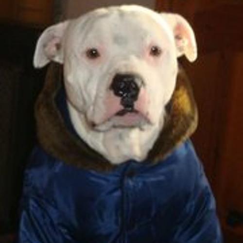 stumitch's avatar