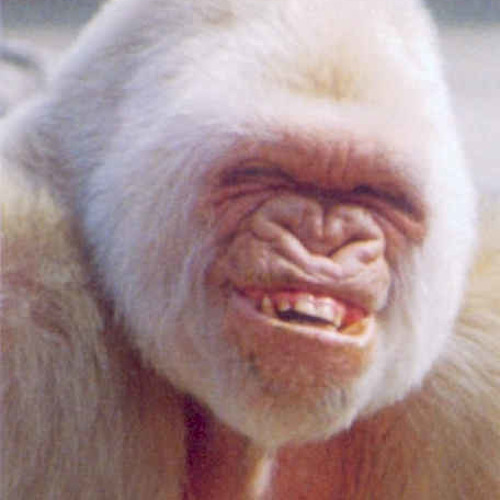 Smegmagators's avatar