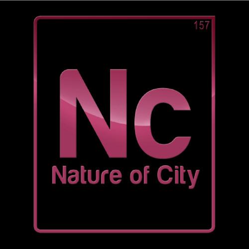 Nature of City's avatar