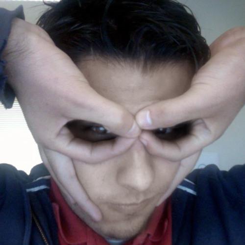 mapacheweb's avatar