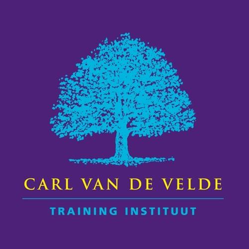 CVDVTI's avatar