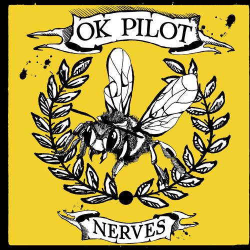 OK Pilot's avatar