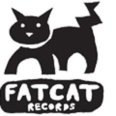 FatCat Records Demo