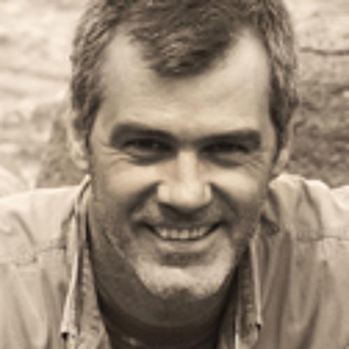bushfind's avatar