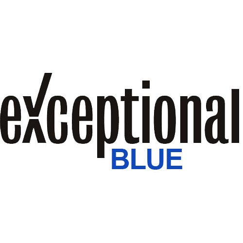 exceptionalblue's avatar