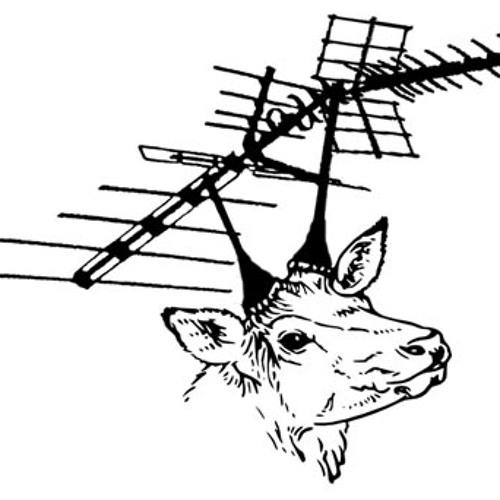 Zooooo Soundsystem's avatar