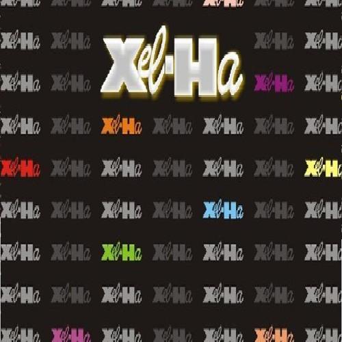xelha disco's avatar