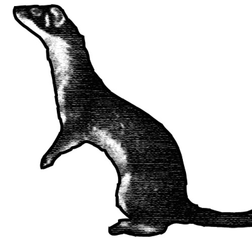 the weasel's avatar