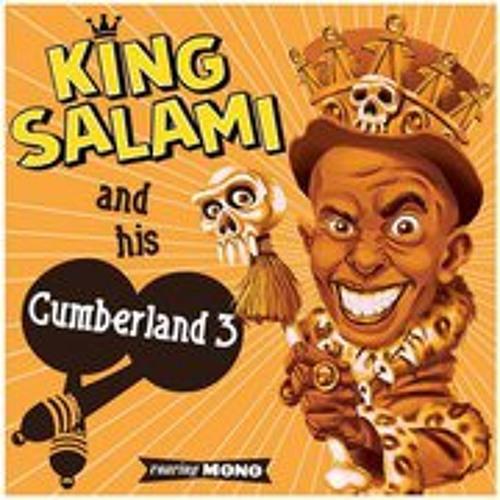 King Salami's avatar
