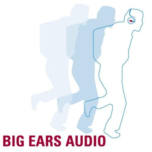 bigearsaudio's avatar