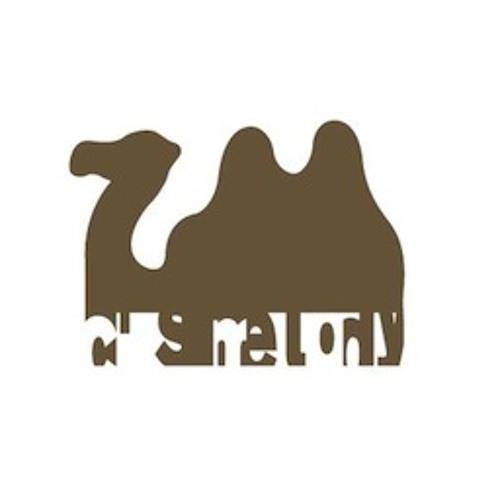 camel_z's avatar