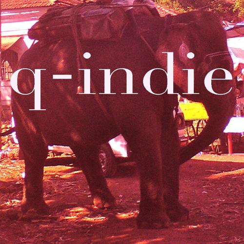 q-indie's avatar
