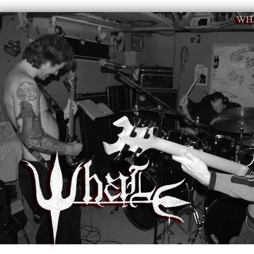 WHALE's avatar