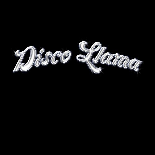 Disco Llama's avatar