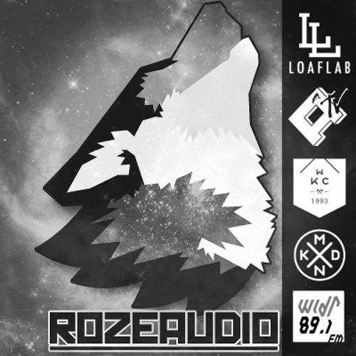 ROZEAUDIO's avatar