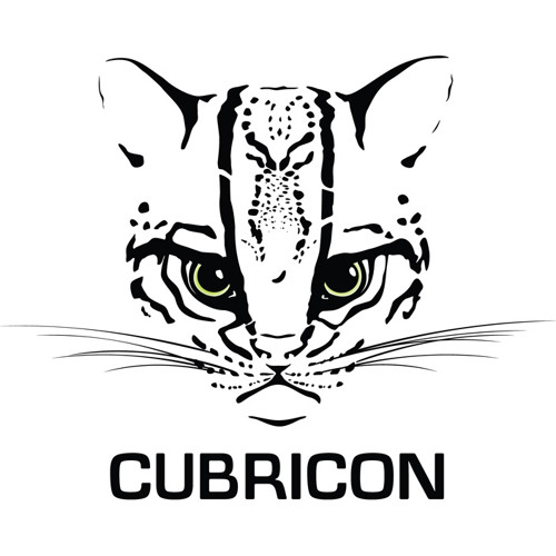 CUBRICON's avatar