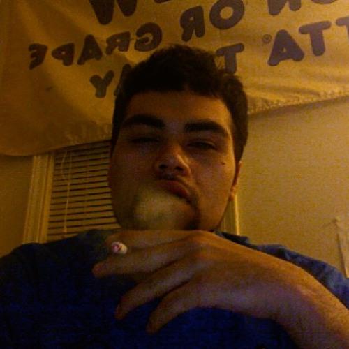 skrill-dog millionaire's avatar