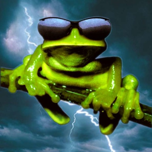 treefrogs's avatar