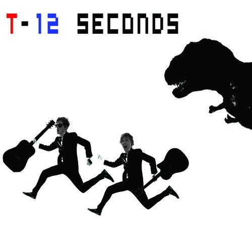 T Minus 12 Seconds's avatar