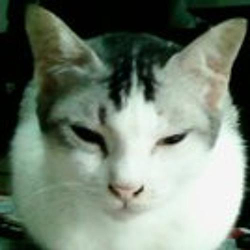 amirgaris's avatar