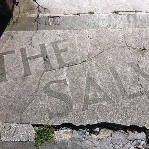 THE SALV's avatar