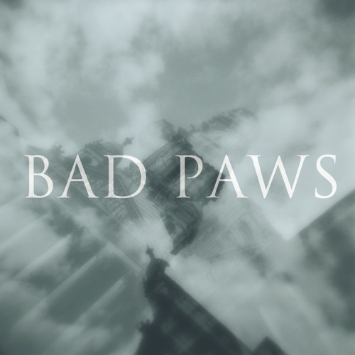 badpaws's avatar