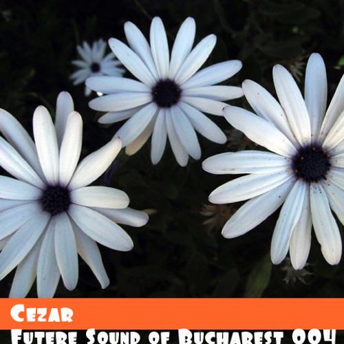 Futere Sound of Bucharest's avatar