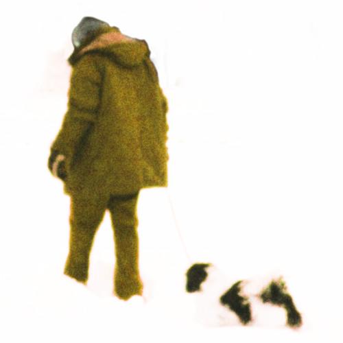 CS8X's avatar