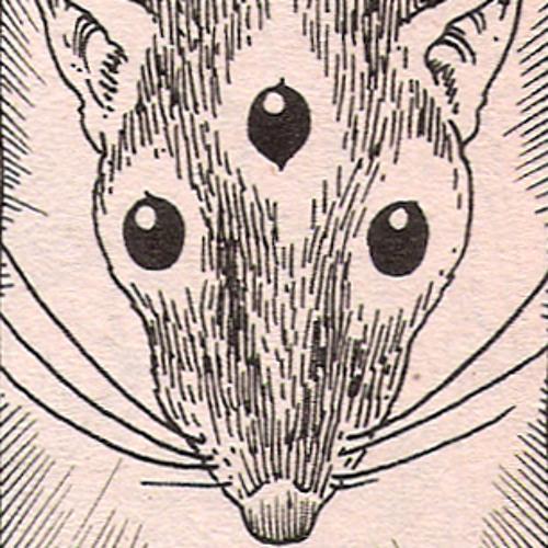 Amos Wolf's avatar