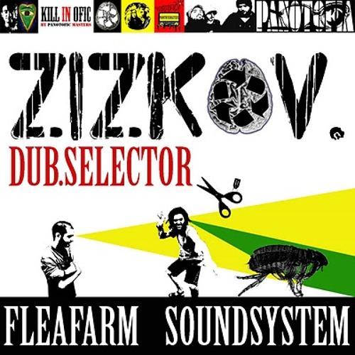 FleaFarm SoundSystem's avatar