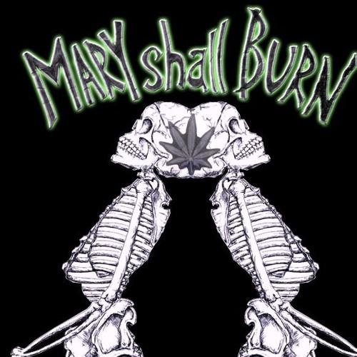 Mary Shall Burn's avatar