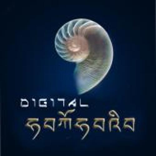 Digital Samsara's avatar