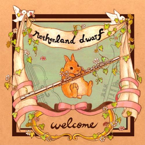 netherland dwarf's avatar