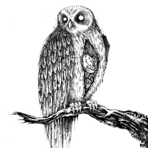 nite owl's avatar