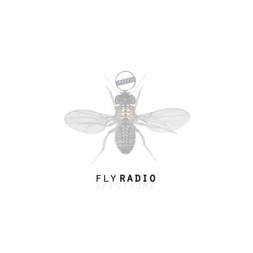 Fly Radio's avatar