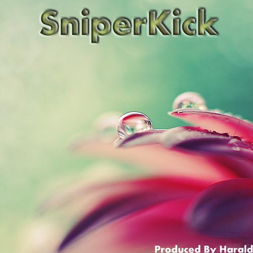 Harald_Sniper's avatar