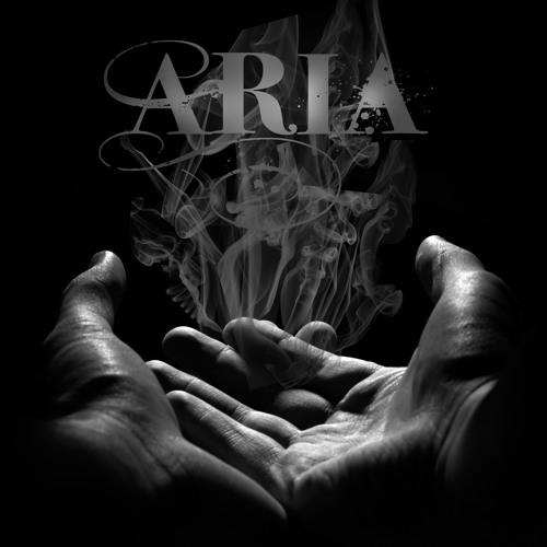 Aria Mansoori's avatar
