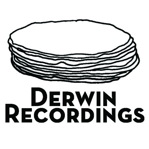 Derwin Recordings's avatar