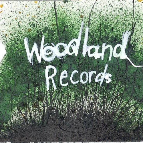 Woodland Records's avatar