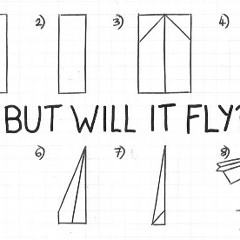 But Will It Fly?