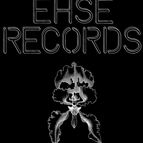 Ehse Records's avatar