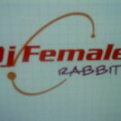 Dj Female rabbit-Touch the sky