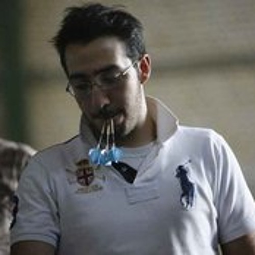 behzad-mansourbakht's avatar