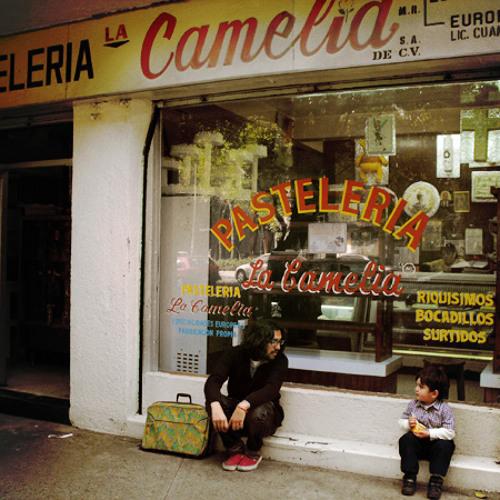Belafonte Sensacional's avatar